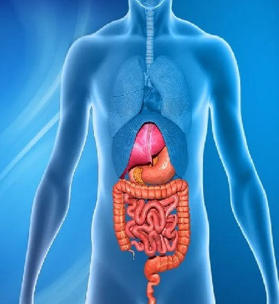 Gastrointestinal (GI) cancer Treatment in Iran