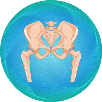 Hip Replacement package