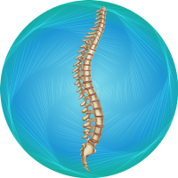 Spinal-Fusion-icon-min-en