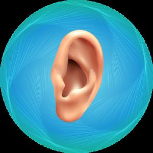Ear Pinning Package